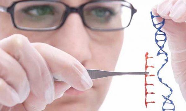 جنگ با سرطان ریه برای اولین بار از طریق فناوری CRISPR - مجله