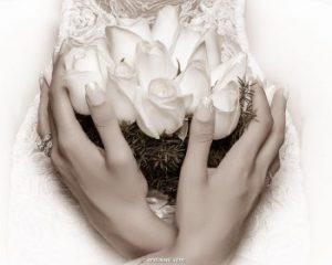 آتلیه عکاسی عروس با قیمت مناسب در تهران غرب شرق شمال جنوب 4 شعبه - آتلیه تخصصی عروس داماد - فیلمبرداری عروسی - آتلیه عروس ارزان قیمت - فیلمبرداری ارزان قیمت
